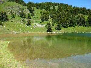 Lac de la grande Lécherre