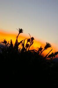 randonnée été Maurienne les levés de soleil