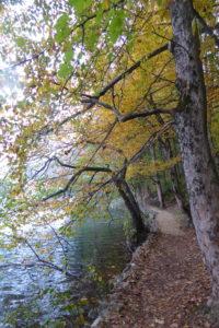 plitcicka jezera
